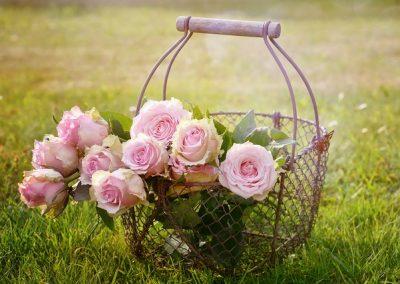 June – Horticultural Show