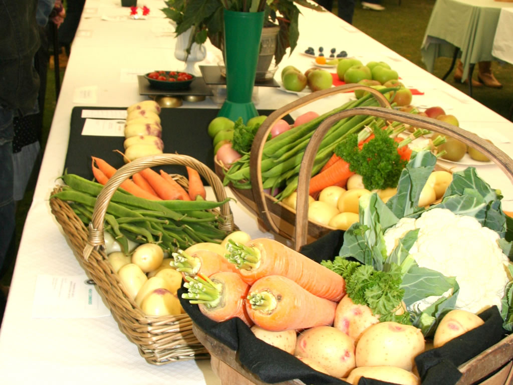 Vegetables exhibited in baskets at the August Show.