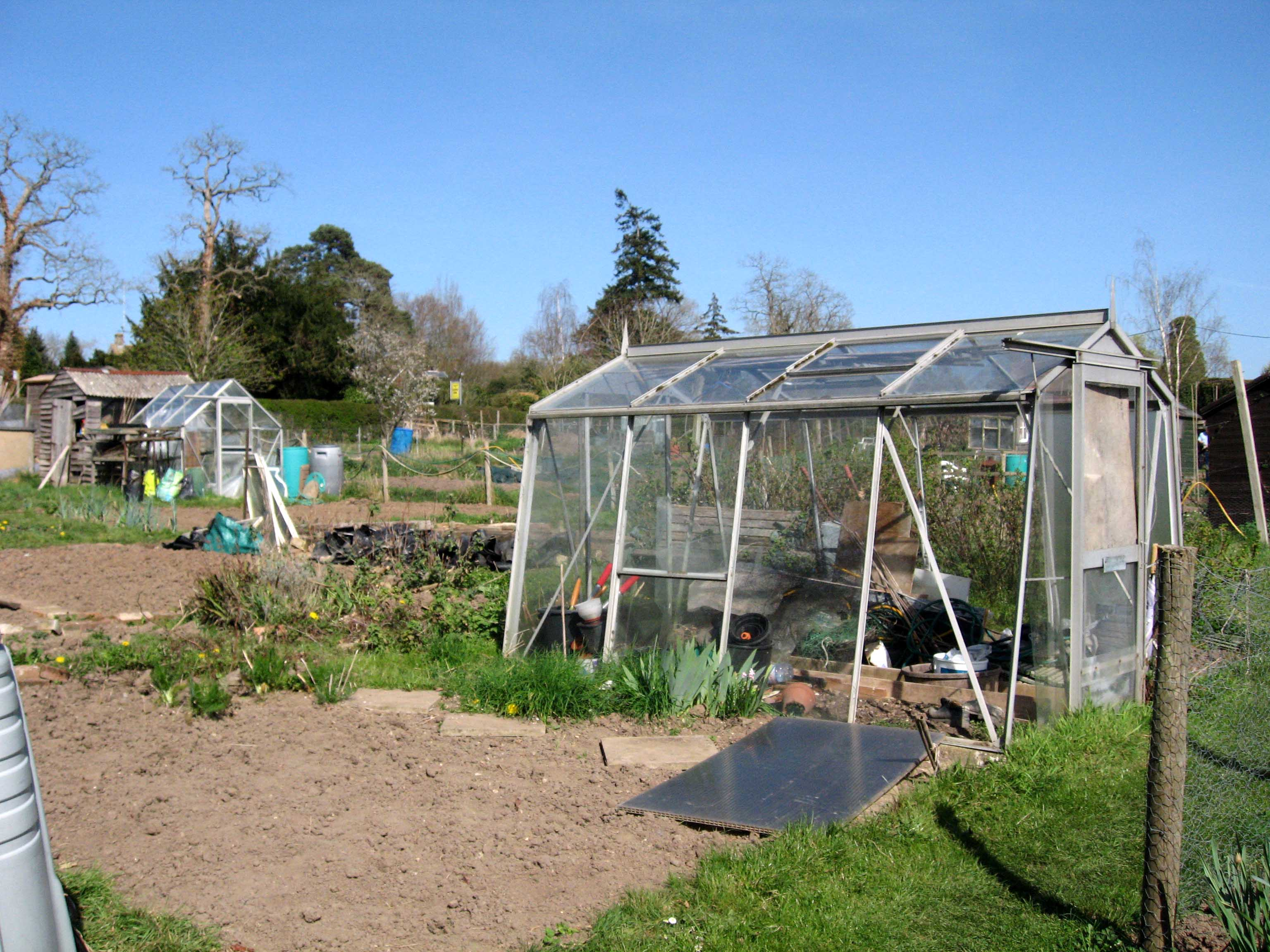 Greenhouse on an allotment plot