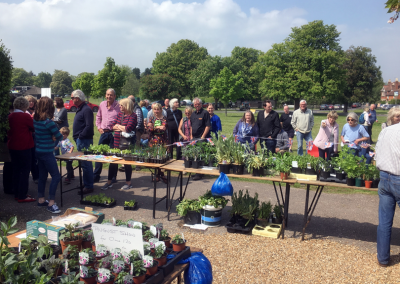 May & Oct – Hort Soc Plant Sales
