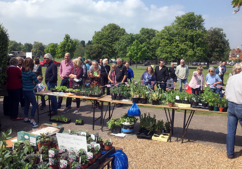 Customers buying plants at the Horticultrual Society plant sale
