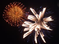 November – Village Bonfire & Fireworks Night