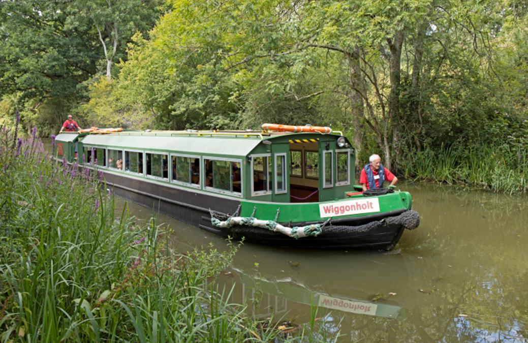 Wey & Arun Canal Trust News